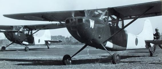JGSDF L-19s