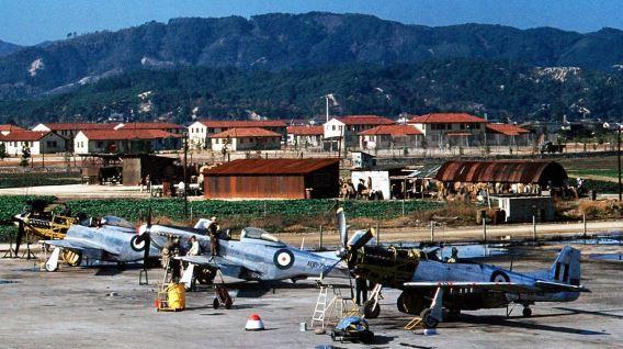 RAAF F-51Ds Iwakuni