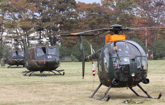 JGSDF 1st AvSqn Tachikawa