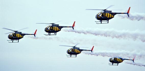 JGSDF Sky Hornets team (1)