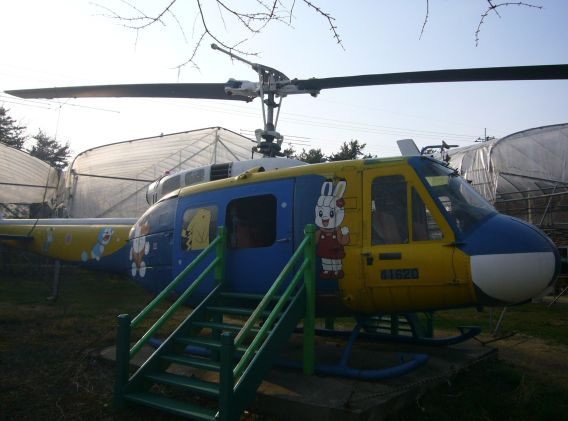 Herb World Akita UH-1H in spring