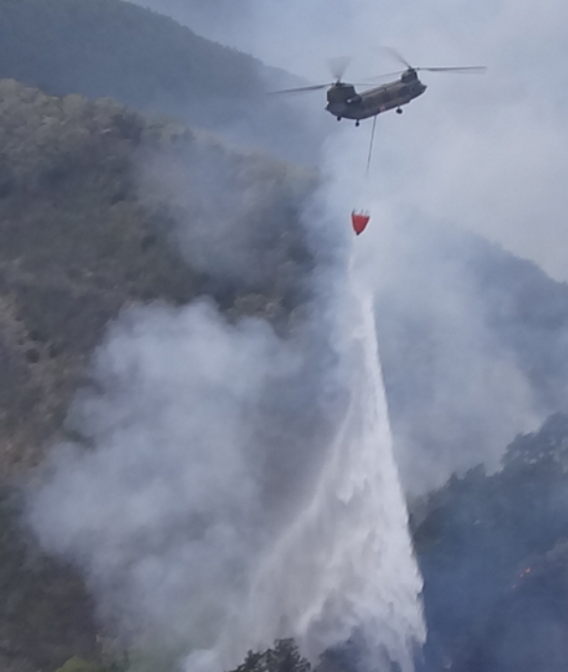 JGSDF Gunma firefighting 2014