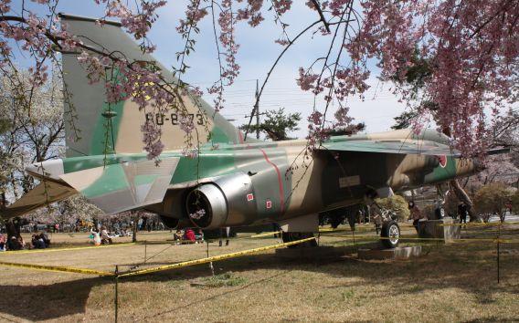 Kumagaya F-1 (2)