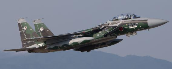F-15 JASDF (69a)crs