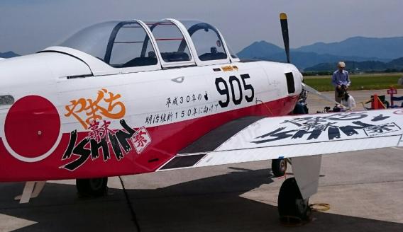 Hamachi1290