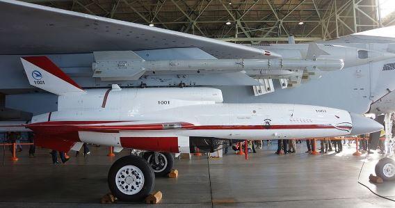 JASDF TACOM UAV(1001)