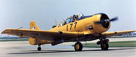 T-6G (ARWsite)crs
